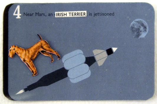 04 irish terrier