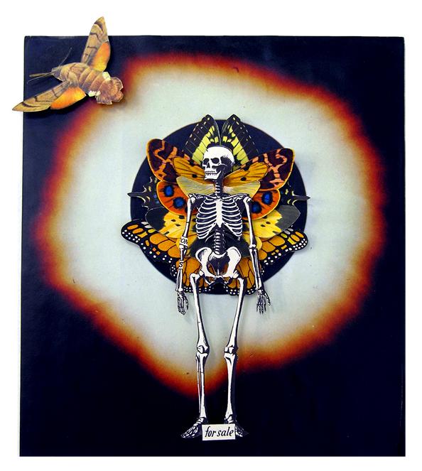 Wings and Bones