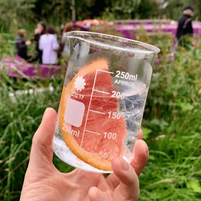 gin cruise edinburgh