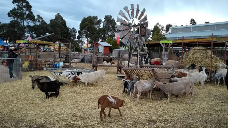 Fiera dell'agricoltura e del bestiame