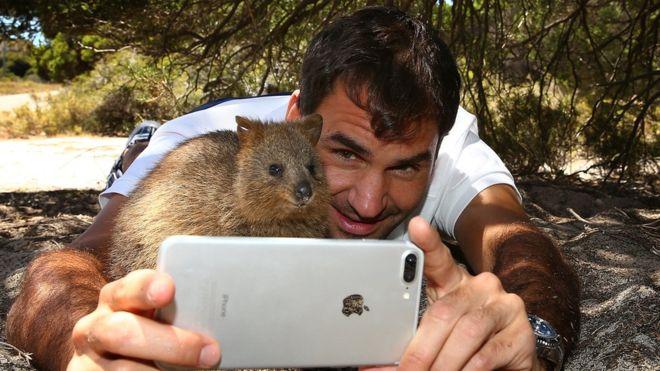 Federer selfie con quokka e telefono