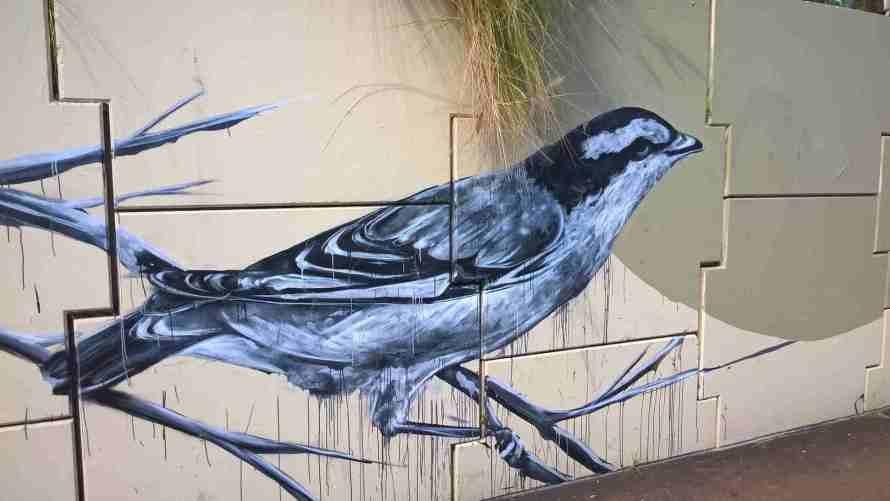Uccello dipinto murales (Brisbane)