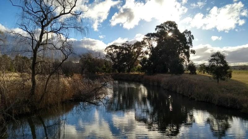 Canberra wetland