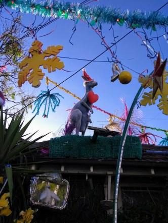 canguro natalizio melbourne