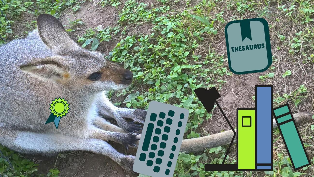 wallaby che digita senza errori