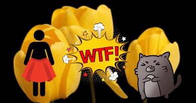 donna tulipani e degrado
