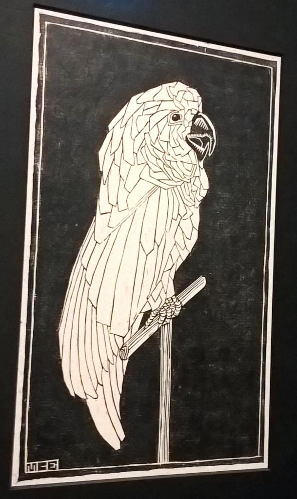 Escher pappagallo cacatua