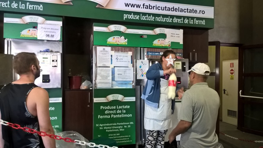 distributore del latte mercato obor romania