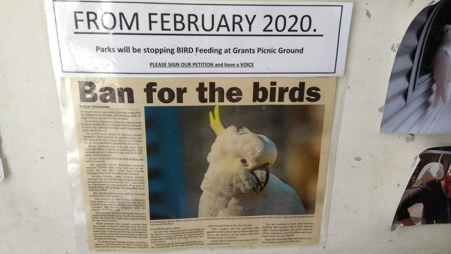 posto dove dare da mangiare agli uccelli chiude