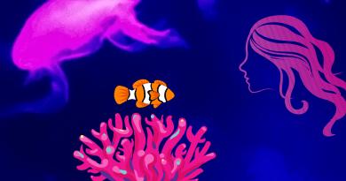 bellezza, pesce pagliaccio e anemone di mare simbiosi