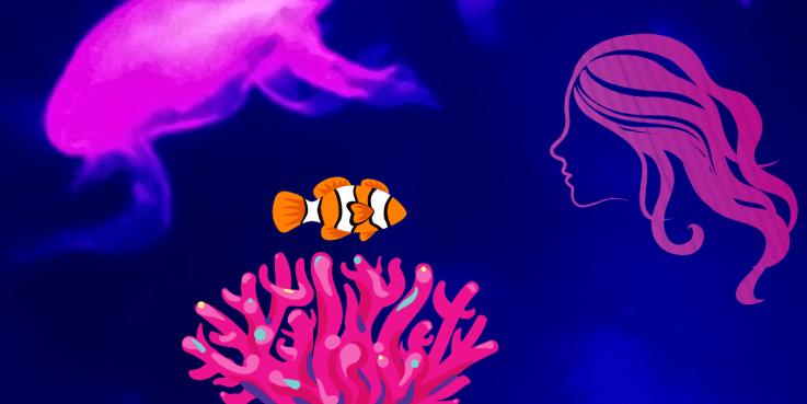 La bellezza della natura: pesce pagliaccio e anemone di mare simbiosi