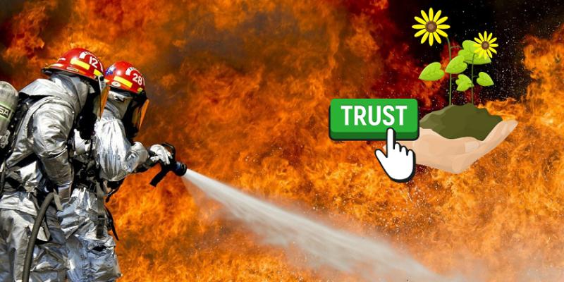pompieri che spengono il fuoco con piantina e speranza