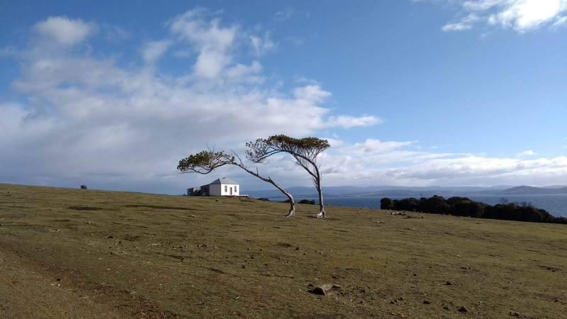 Maria Island Tasmania paesaggio e natura
