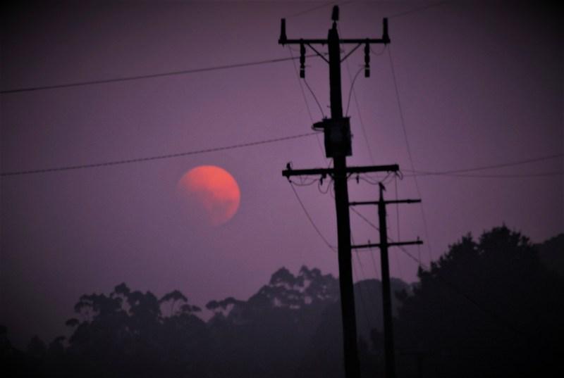 cielo viola, sole rosa e palo dell'elettricità
