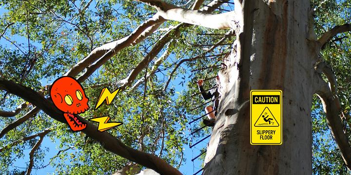 arrampicarsi su un albero a pioli