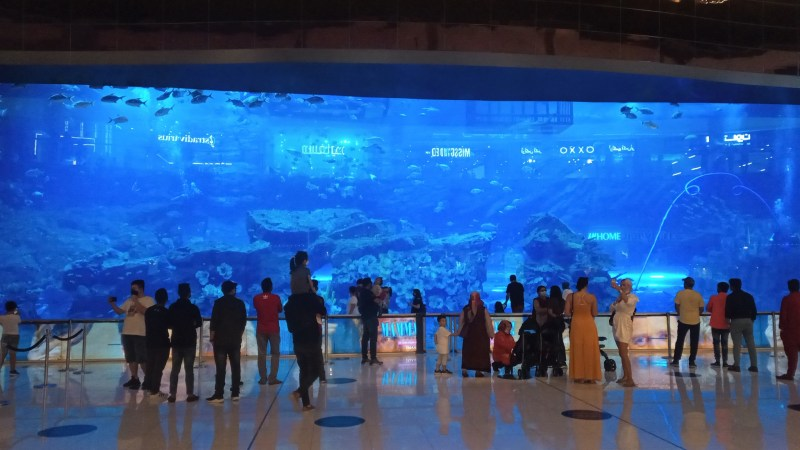 Acquario visto dall'esterno nel centro commerciale Dubai Mall