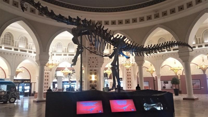 Dubai Dino, scheletro di dinosauro fossile nel Dubai Mall