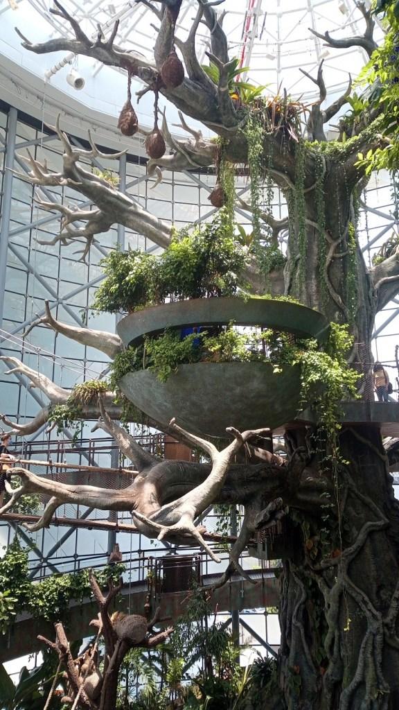 The Green Planet Dubai interno con albero