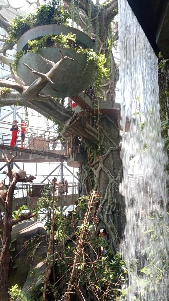 The Green Planet Dubai con cascata artificiale