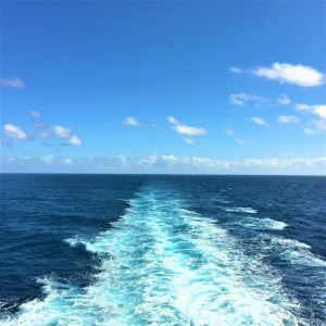 Cruise Ship Tips - Lucy Williams Global