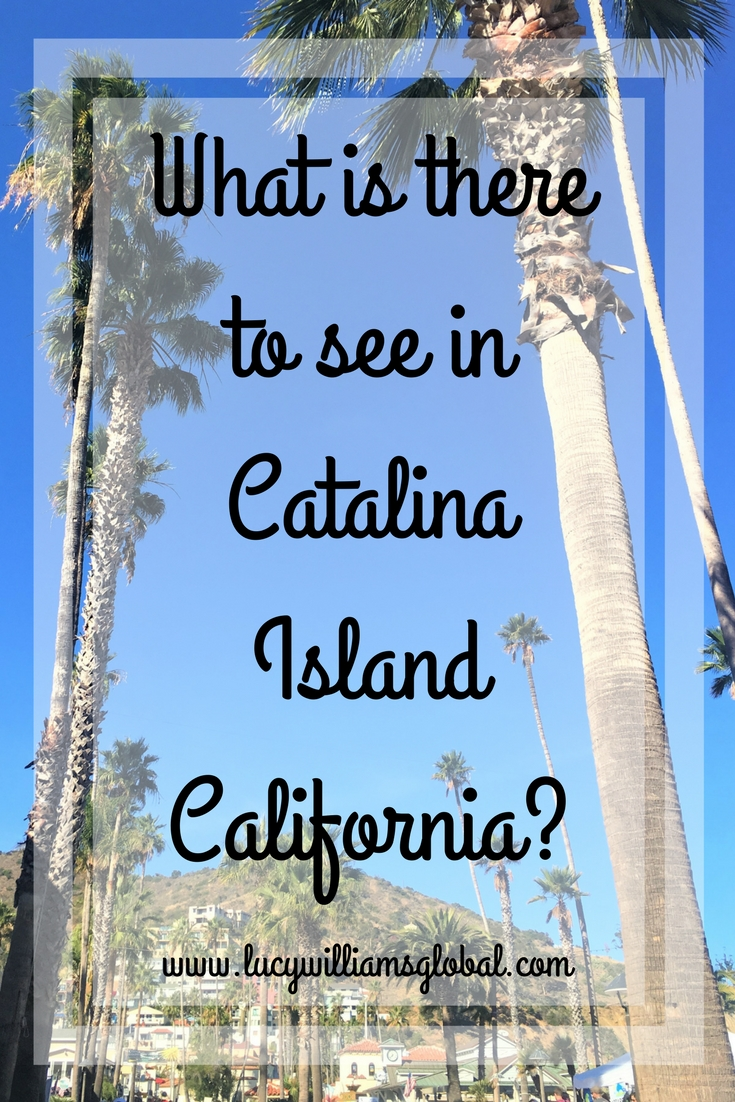 What is there to see in Catalina Island California USA - Lucy WIlliams Global