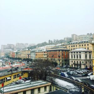 Genoa Italy - Lucy Williams Global