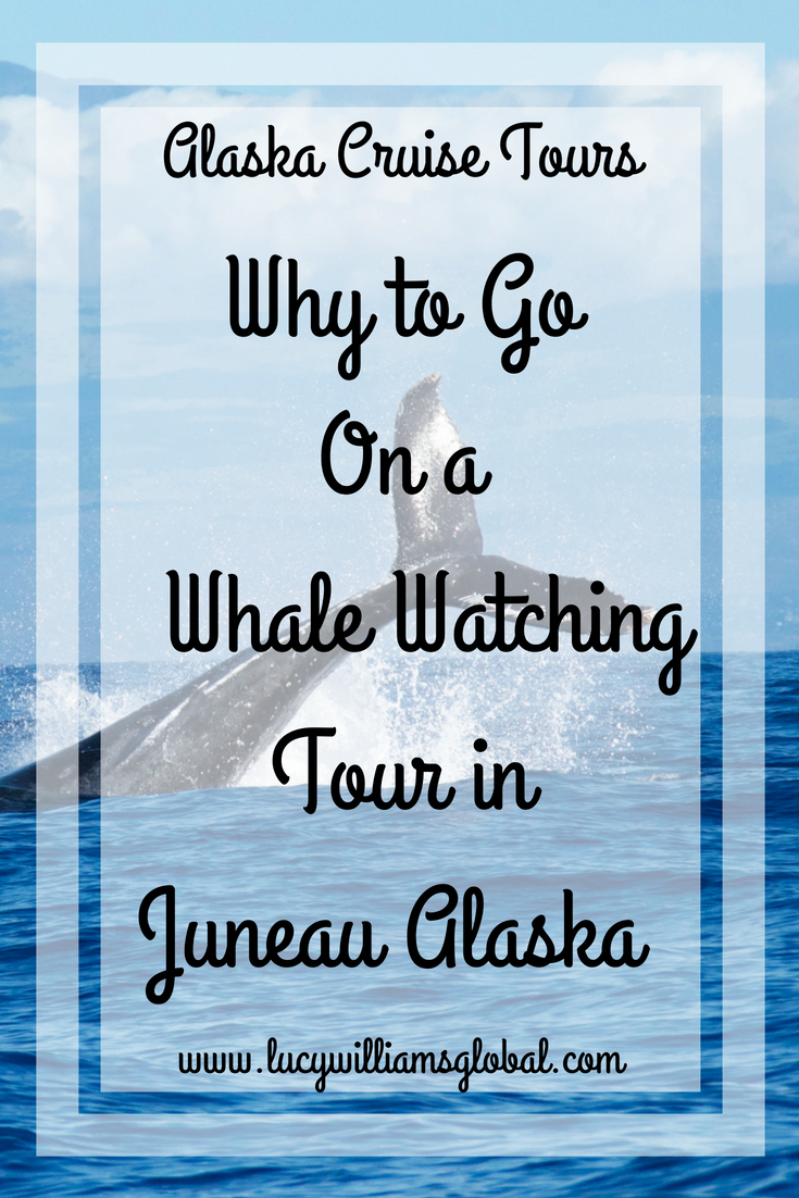 Why to Go on a Whale Watching Tour in Juneau Alaska - Lucy Williams Global