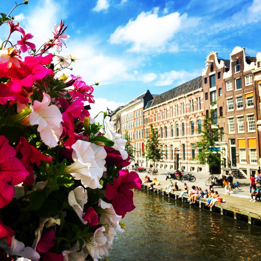 Alternative Tours of Amsterdam Netherlands - Lucy Williams Global