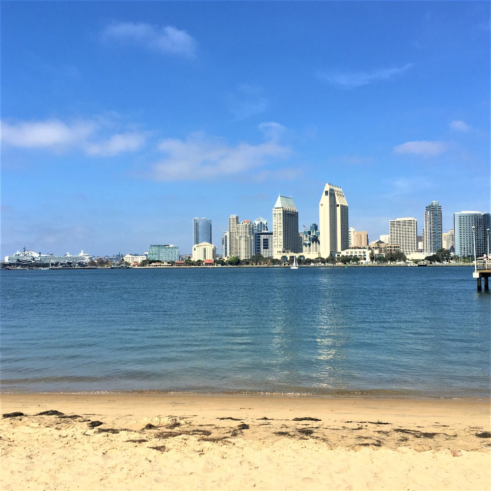 Cruise Ship and city of San Diego - Lucy Williams Global