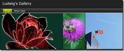 Shutterfly-gallery header