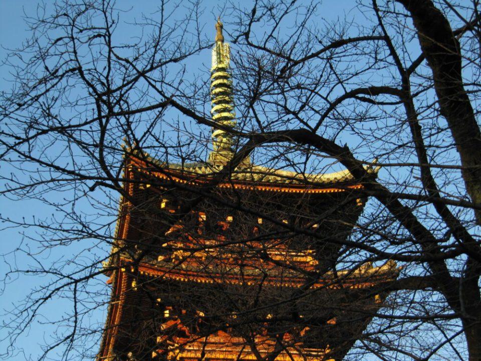 hacer turismo en Tokio