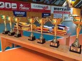 Lugoj Expres Echipa de lupte libere a CSM Lugoj a câștigat cel de-al 10-lea titlu de campioană a României superliga lupte libere lupte echipe CSU Cluj Napoca CSM Lugoj CS Universitatea de Vest Timișoara CS Fasok Odorheiu Secuiesc campionatul național campioana a României