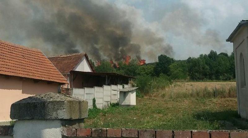 Lugoj Expres 25 de gospodării în pericol! Focul a pârjolit 40 de hectare de vegetație, în apropiere de Lugoj (FOTO) pompierii Lugoj ISU Timiș intervenție dificilă incendiu vegetație incendiu gospodării în pericol Bara
