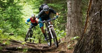 Lugoj Expres Concurs de ciclism: Cupa CBT Nădrag, ediția a III-a valea Padeșului turism Primăria Nădrag Nădrag cupa CBT Nădrag cross country concurs competiție ciclism