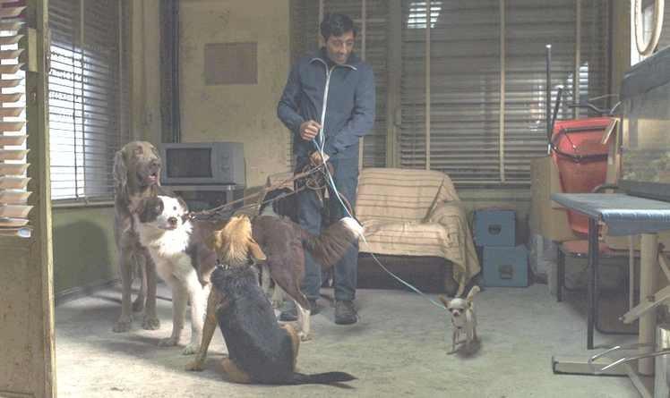 """Lugoj Expres """"Frizerul de câini"""", lansare și la Lugoj! Câștigătorul Premiului Palm Dog va susține câinii abandonați Lugoj lansare Husse România hrană Frizerul de câini film cinematografe câini avandonați câini Bela Lugosi adăpost"""