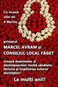 Lugoj Expres 3 1 faget
