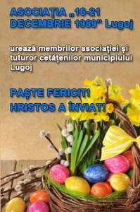 Lugoj Expres 14 16-12