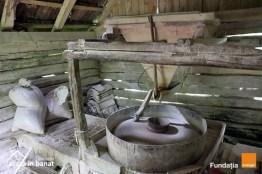 Lugoj Expres 10 mori de apă, reabilitate de Asociația Acasă în Banat și Fundația Orange Susține un ONG Salvăm Morile de Apă reabilitare proiect patrimoniul mulinologic mori de apă Fundația Orange Caraș-Severin Acasă în Banat