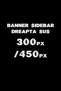 Lugoj Expres banner 300 450