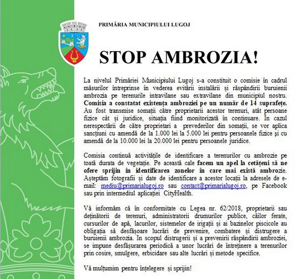 Lugoj Expres Primăria Municipiului Lugoj, măsuri pentru combaterea ambroziei vegetație terenuri stop ambrozia sancțiuni Primăria Municipiului Lugoj Lugoj comisie combbaterea ambroziei amendă ambarcațiuni