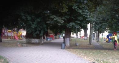 Lugoj Expres Căsuțele din Parcul Prefecturii vor fi demolate Stadionul Municipal Parcul Prefecturii Lugoj hotărâre demolare Consiliul Local Lugoj cioșcuri căsuțe administrația lugojeană