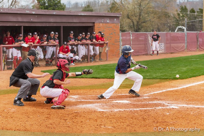 Lee University Baseball Game