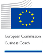 European Commision Business Coach Luis Font