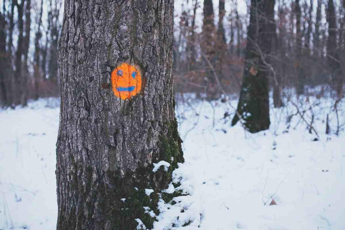 Sobre el exceso de optimismo