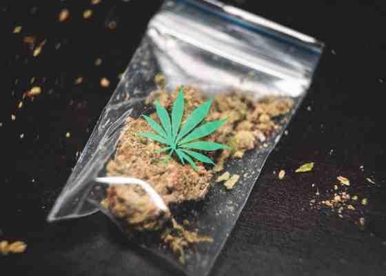 ▷ Prohibir las drogas no funciona. ¿Qué alternativas existen? 2
