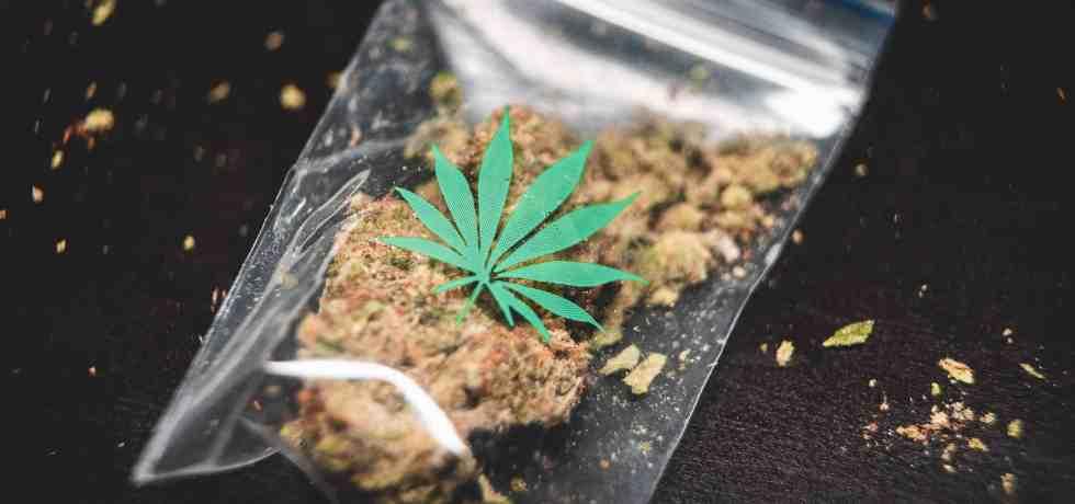▷ Prohibir las drogas no funciona. ¿Qué alternativas existen? 39