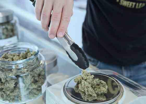 ▷ Síndrome de abstinencia de la marihuana y sus efectos 5