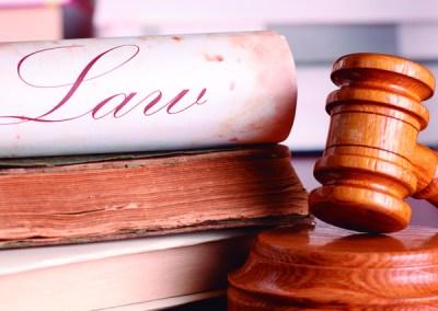 Funcionario Judicial