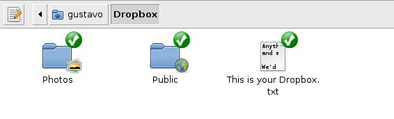 Dropbox no Ubuntu - Armazenamento gratuito de arquivos on-line (4/4)