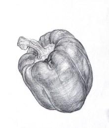 Paprika, Bleistift, 2014